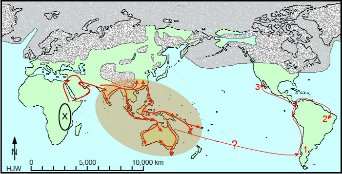 human migrations the last 100 000 years abagond
