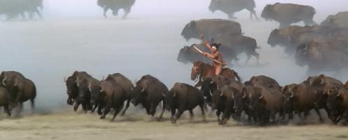 bison-hunt