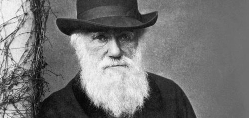Charles-Darwin-1880