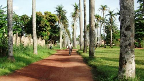 0N-18E-Avenue-Royale-Mbandaka-DR-Congo