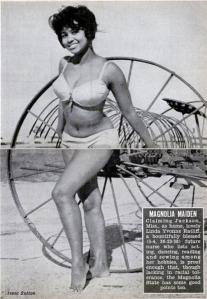1965-04-15