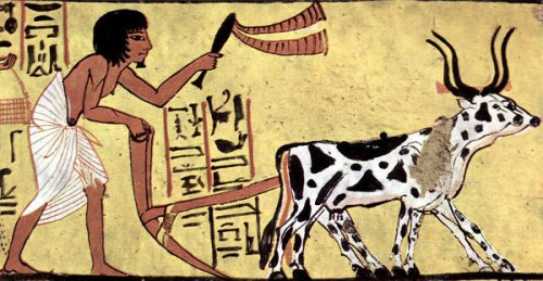 egyptian-plough-and-writing