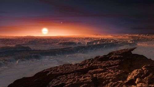 What Proxima b's surface might look like.