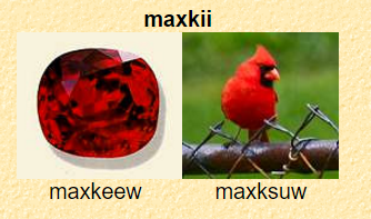 maxkii