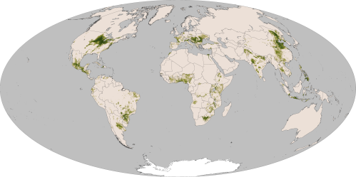 world-maize-map
