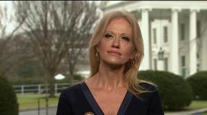 kellyanne-conway-on-meet-the-press-2017-01-22