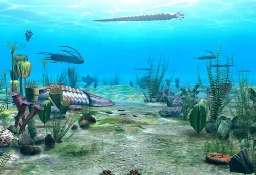 cambrian_period